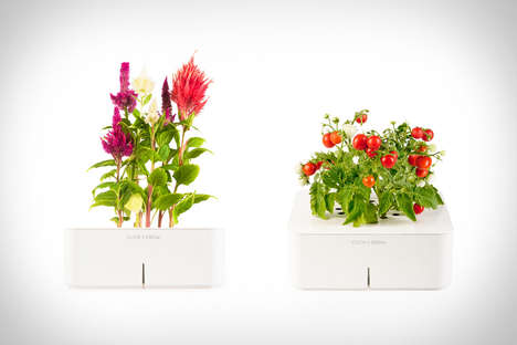 The 'Click & Grow Smartpots' Are Operated Via Technology