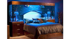 Accessible Bedroom Aquariums - The Acrylic Tank Manufacturers Headboard Fits Bedside Tables