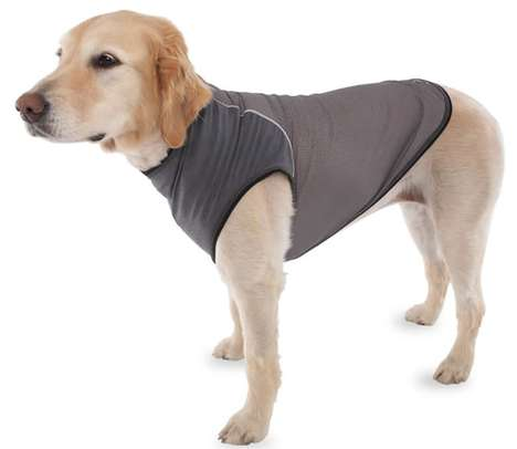 Pooch-Protecting Garments