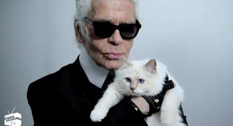 Haute Feline Flicks