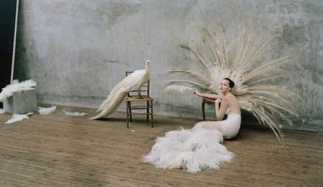 Feathery Avant-Garde Photoshoots