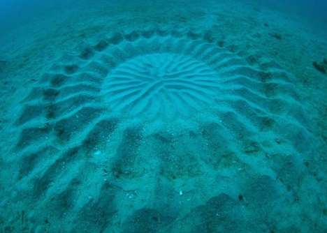 Deep Sea Sand Sculptures