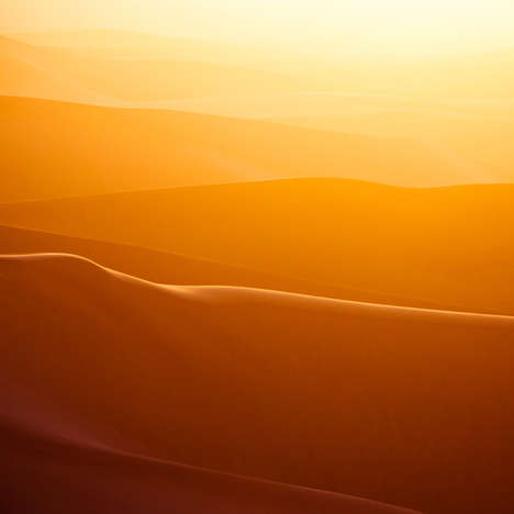 Sun-Drenched Desert Photography