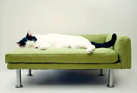 Posh Pet Couches - The Modern Pet Bed is a Stylish Way to Pamper Your Pooch or Cat