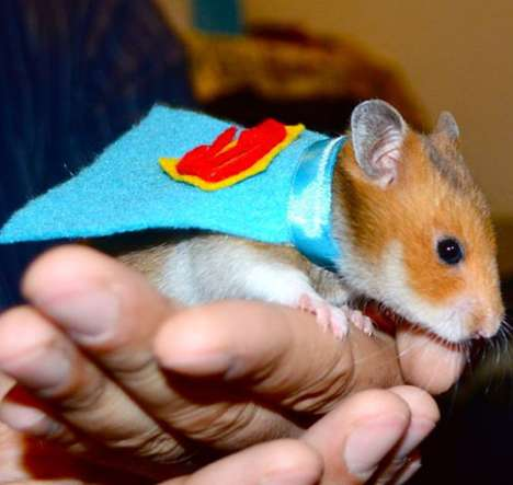Grab Your Furry Friend a Superman Hamster Cape for Halloween