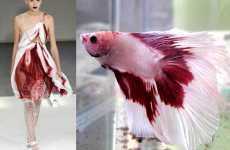 Fish-Inspired Fashion - Siamese Fighting Fish Dresses at Rodarte