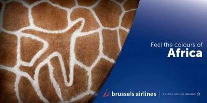 Plane-Printed Animal Ads