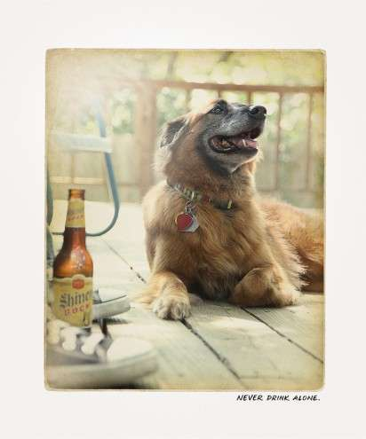 Instagram-Like Beer Ads