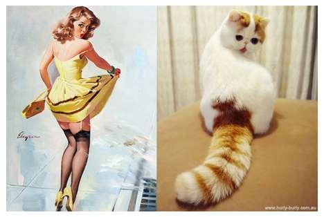 Suggestively Sprawled Feline Sites