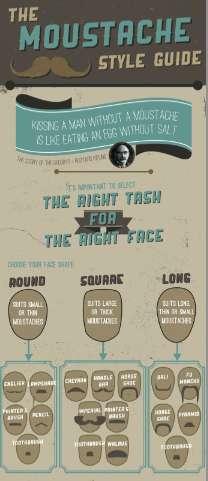 Festive Facial Hair Infographics