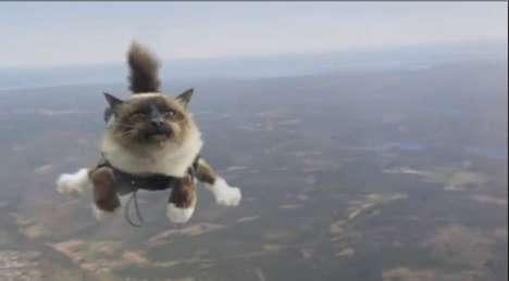 Parachuting Cat Commercials