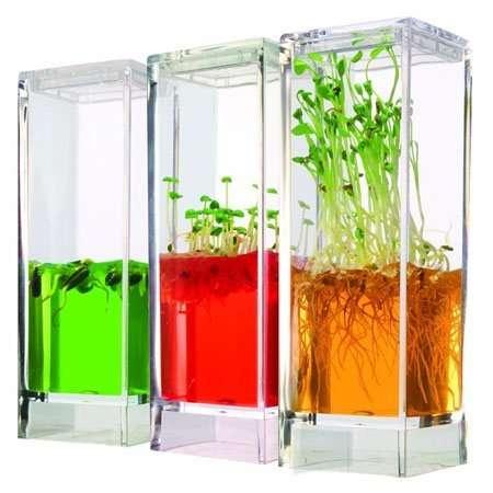Colorful Gelatinous Greenhouses