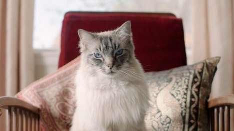 Majestic Feline Heating Ads