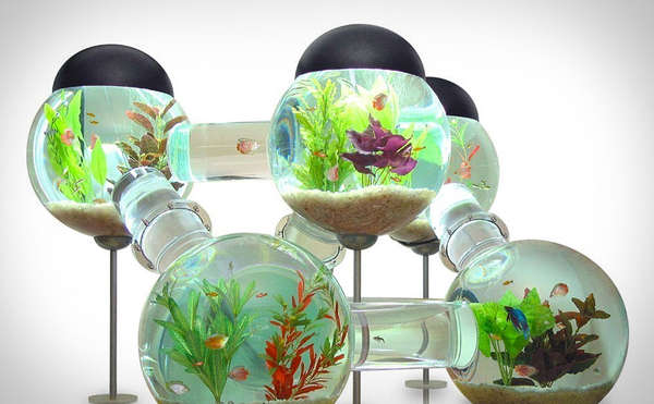 87 Unconventional Aquariums