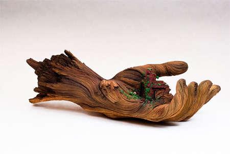 Deceptive Organic Sculptures