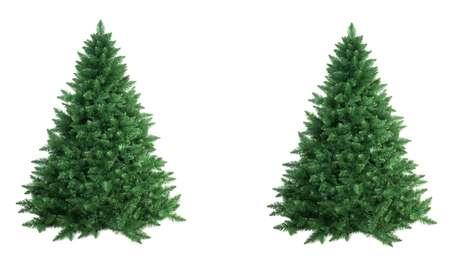Christmas Tree Cloning
