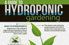 Hydroponic Gardening Guides - Find Out the Facts and History Behind the Practice with this Chart