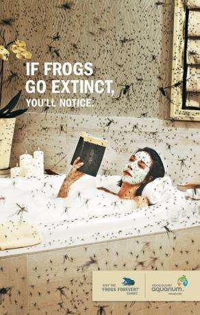 Animal Extinction Awareness Ads - Frogs Forever at Vancouver Aquarium