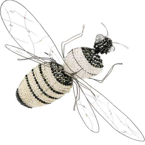 $14,000 Ceiling Insects