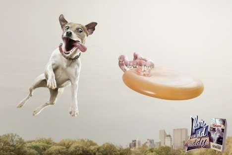 Dog Dentures