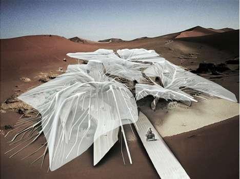 Cellular Desert Cities