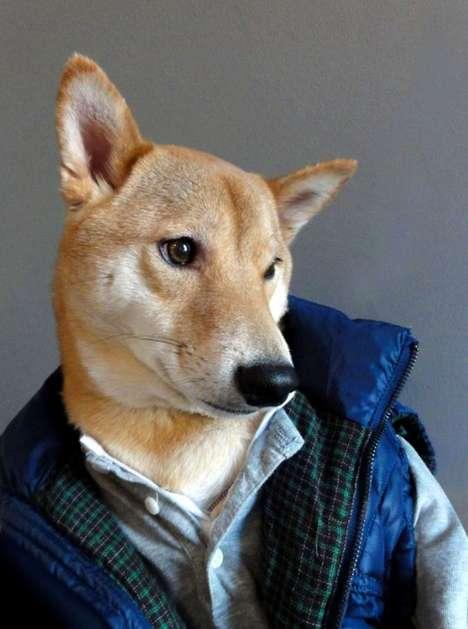 Dapper Canine Fashion Blogs