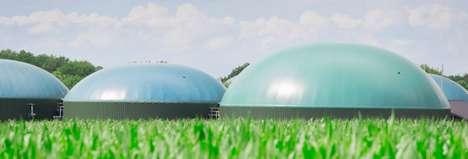 Biomass Electricity Companies
