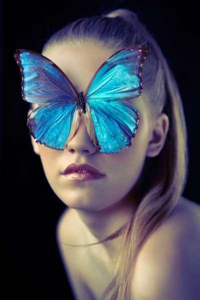 Illuminated Insect Editorials
