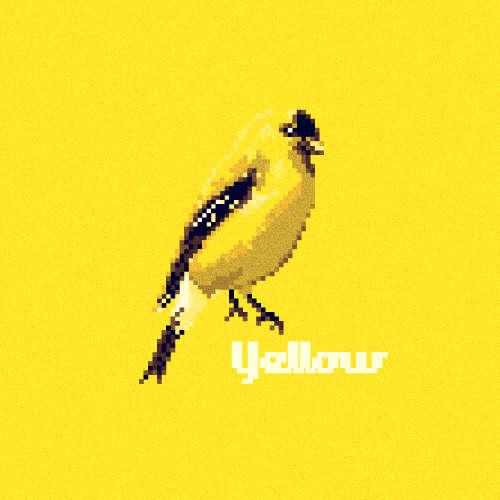 16 Beautiful Bird Illustrations
