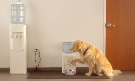 Personified Pet Purchase Commercials