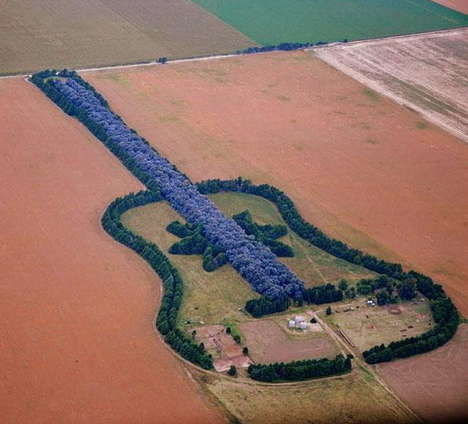 Guitar-Shaped Agriculture