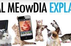 Kitten Social Media Infographics - This Infographic Explains Each Social Media Network Through Cats