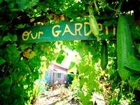 Crowdsourced Community Gardens