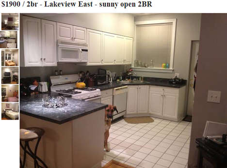 Subtly Photobombing Pups - This Cute Pup Photobombed Every Picture on a Craigslist Apartment Listing