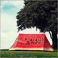 Picture Motif Camping Tents
