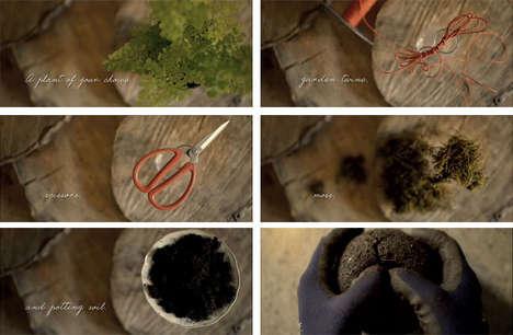 Environmental Film Initiatives