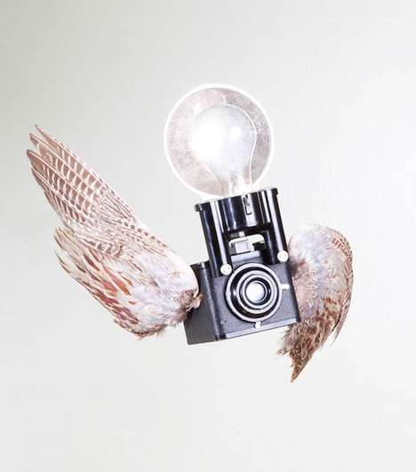 Winged Camera Captures