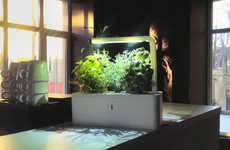 Self-Sustaining Planters - The Smart Herb Garden Uses Nanotechnology to Grow Plants Indoors