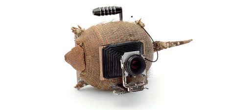 Reincarnated Animal Cameras