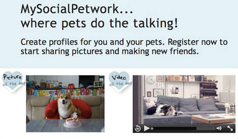 Paw-Friendly Networking Sites