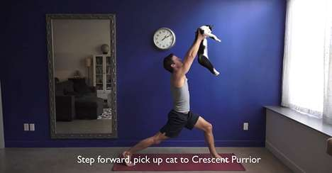 This Cat Yoga Video is Sure to be a Hit With Cat Lovers