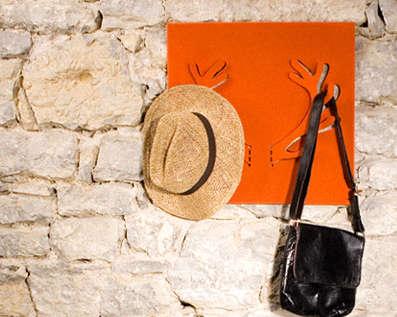 Antlered Hanger Accessories