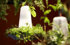 Enchanted Forest Lamps - The Green Lights by Token Provides Illumination and Fresh Air