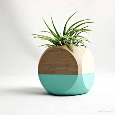Colorblocked Tillandsia Holder