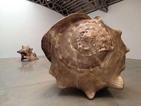 Magnified Bronze Shell Sculptures