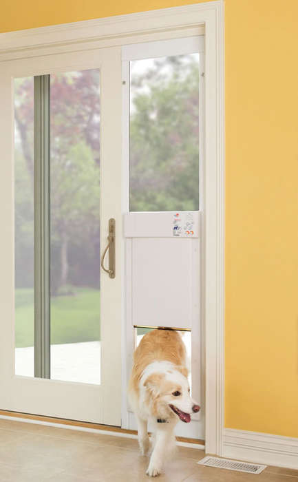 Doggy Doorway Additions