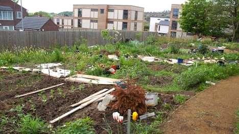 Straw-Built Community Homes