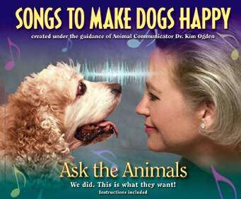 Musical CD Scientifically Designed For Dogs