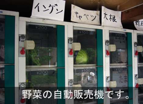Vegetable Vending Machines - For Vegans On The Go