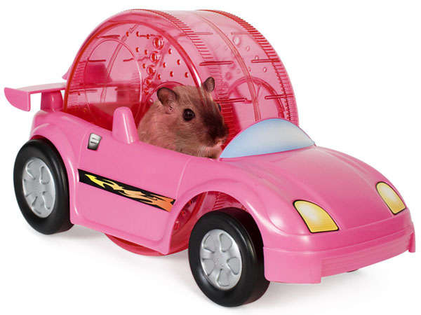 30 Amusing Hamster Products